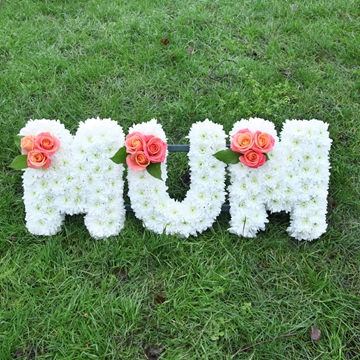 Picture of White and Pink Mum Sympathy Flowers