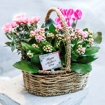Picture of Spring Basket