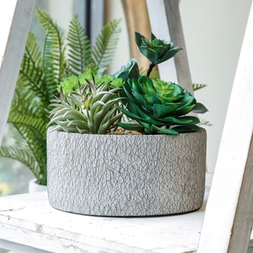 Picture of Silk succulent bowl